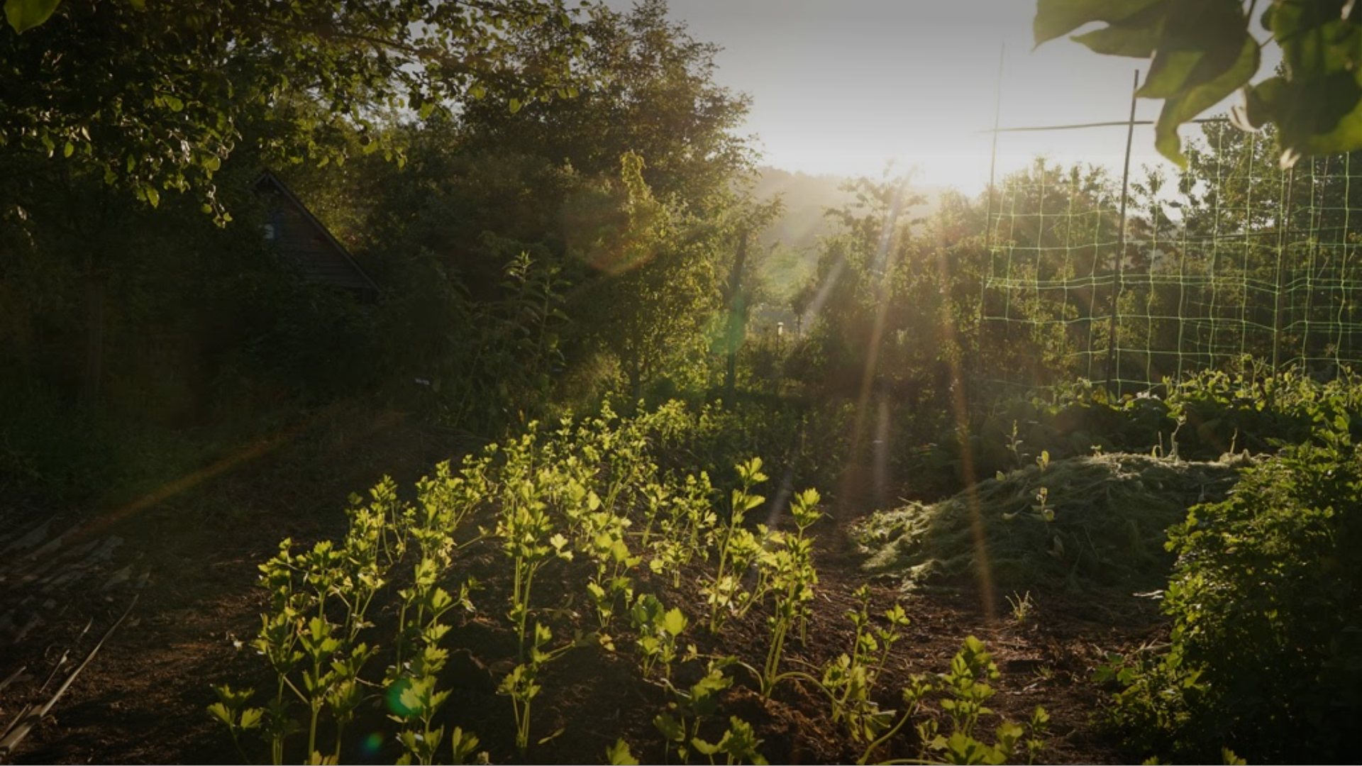 In the heart of the county of Eure: an inspiring organic farm